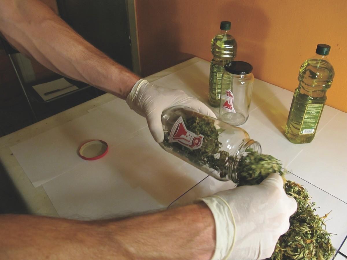 Aceite de oliva cannábico