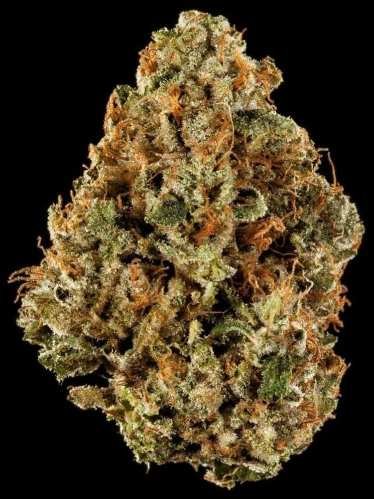 BEST INDICA FLOWER: XXX OG by Life Is Good Healing