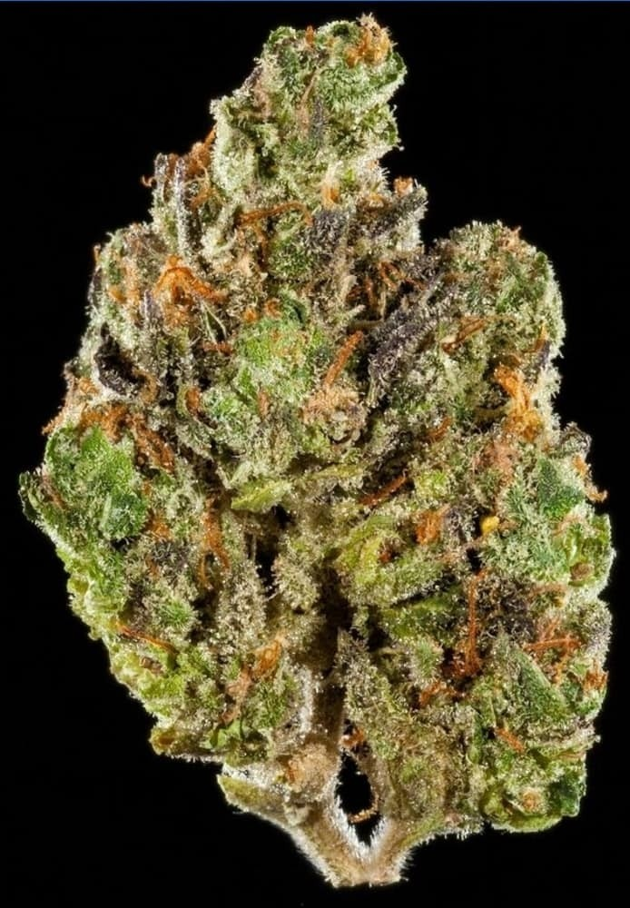 BEST SATIVA FLOWER 1st Place: Dosi-Orange #9 by Greenline Organics