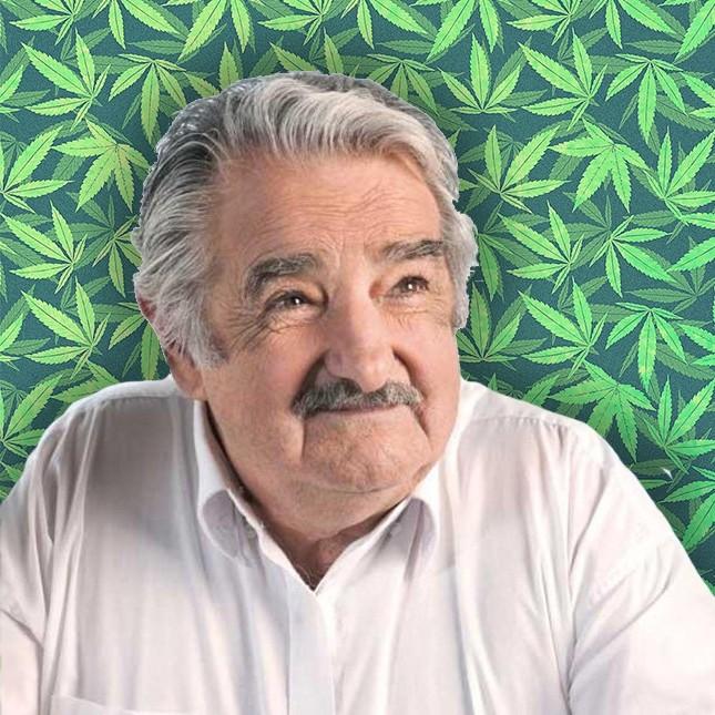 José Mújica: Uruguay. Durante su mandato se aprobó la legalización del cannabis en el país. ¿Qué más se puede decir?