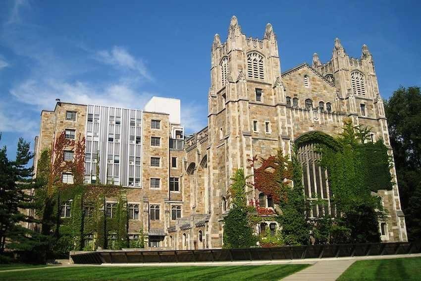 Cáñamo | La universidad de Michigan ofrece un grado de negocios y ...