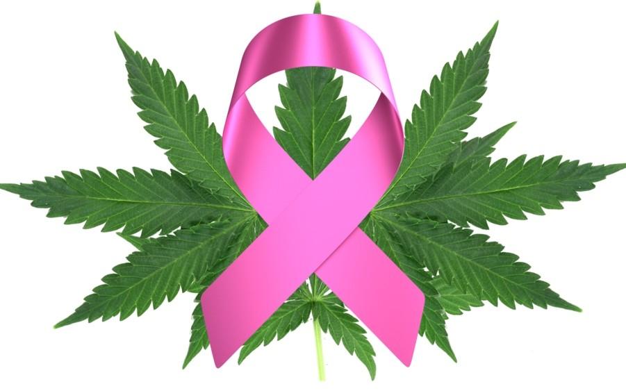 Mayoría de mujeres con cáncer de mama usan cannabis para el dolor en lugar de para las náuseas