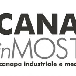 Canapa in mostra