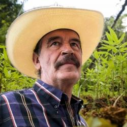 Vicente Fox se pronuncia sobre el cannabis