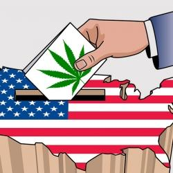 Michigan vota sí a la marihuana para uso recreativo