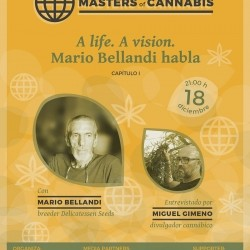 "Assonabis presenta ""Masters of cannabis"""