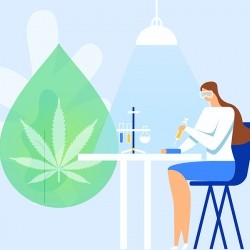 Diferencias entre el full spectrum y el broad spectrum CBD